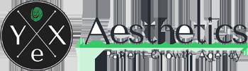 YeX Aesthetics Logo